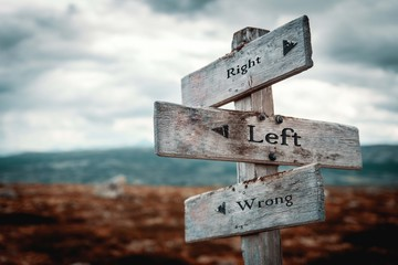 Right, left, wrong wooden signpost in nature. Message, do the right thing, do the wrong thing, boards, sign, rustic concept.