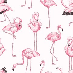 Colorful seamless pattern with pink flamingo. Hand drawn realistic background with tropical birds standing in different postures. Trendy vector backdrop with exotic wild animals.