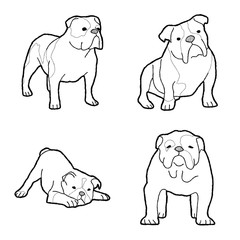 Bulldog Animal Vector Illustration Hand Drawn Cartoon Art