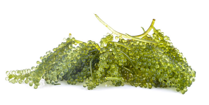 Sea Grapes isolated on white