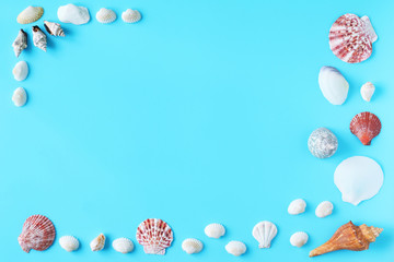 Shells on blue background. Copy space for your text.top view. Wall mural
