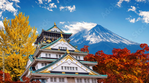 Wall mural Autumn season with Fuji mountain and Castle in Japan.