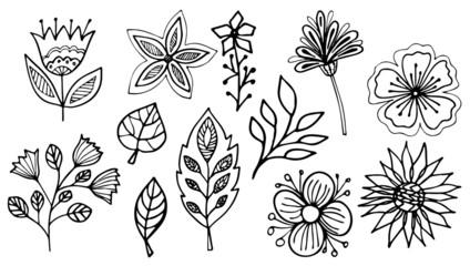 Floral vector illustration. Flowers and leaves on white background. Line art doodles. Hand drawing floral set.
