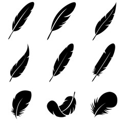 Feather Set icon, logo isolated on white background