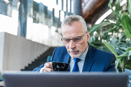Close up of senior businessman sitting at cafe drinking a cup of coffee and looking at laptop