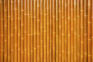 Wall made of natural bamboo stems