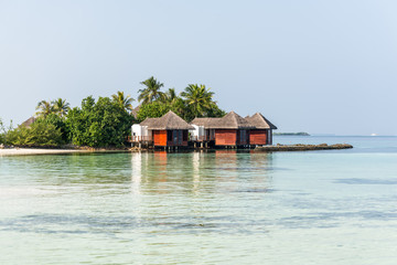 Water bungalows and palms in a tropical paradise island in Maldives. Tourism and travel concept.