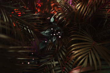 Fotomurales - dark fantastic portrait of red palm leaves and flower