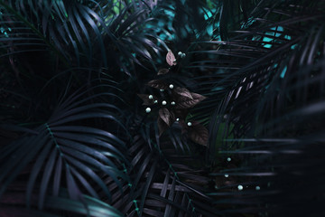Wall Mural - dark blue fantastic portrait of turquoise palm leaves and flower