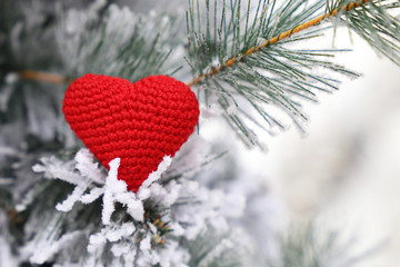 Christmas heart, red knitted symbol of love in the snow on fir branches. Background for romantic card, New Year celebration, Valentine's day or winter weather