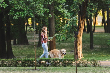 Wall Mural - full length view of beautiful girl in casual clothes waking in park with golden retriever and talking on smartphone