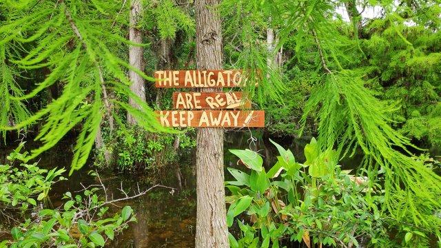 Everglade panneaux alligator Floride Miami