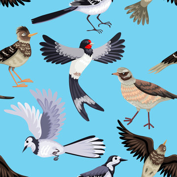 Seamless pattern from various migratory birds. Feathered animals.