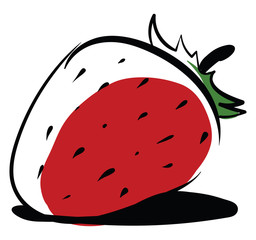 Strawberry drawing, illustration, vector on white background.