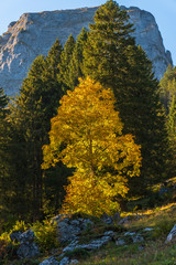 autumn in the mountains of Glarus
