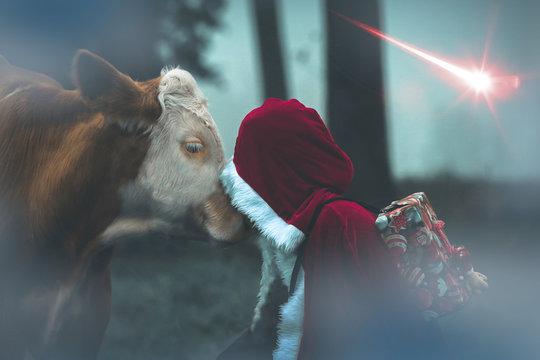 Weihnachtsmann mit Ochse vor Weihnachtsstern