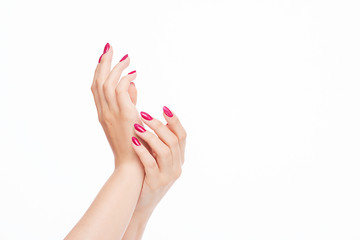 Aluminium Prints Manicure elegant female hands with red pink nails