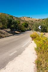road along the Adriatic Sea. Rocks and pine trees, Mattinata, Italy