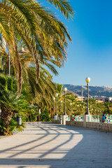 The boulevard of  Manfredonia, with palm trees and light poles. Apulia, Italy