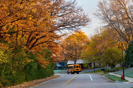 School bus picking up students on a colorful fall day going down a winding road