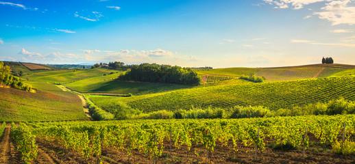 Chianti vineyards and panorama at sunset. Vinci, Tuscany, Italy