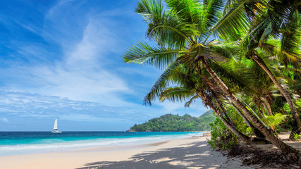 Fototapete - Tropical white sand beach with coconut palm trees and a sailing boat in turquoise sea on Seychelles tropical island.