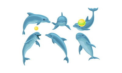 Photo sur Aluminium Dauphins Set Of Blue Dolphins Mading Tricks With Balls Vector Illustration