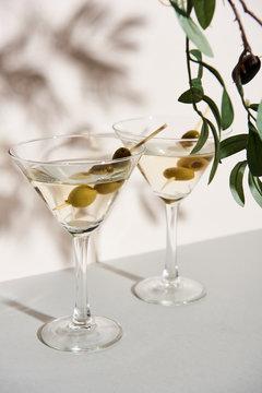 Glasses of martini and olive branch on white background