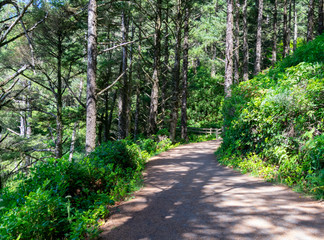 Dirt walkway to Hecta Head Lighthouse in Yachats, Oregon