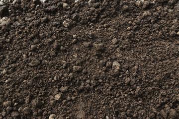 Closeup abundance soil for agriculture or planting peach.
