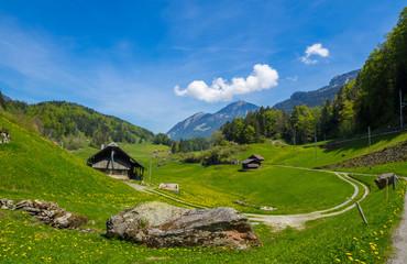 schweiter berglandschaft mit alm im sommer