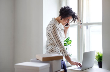 Smiling young woman on the phone using laptop in home office