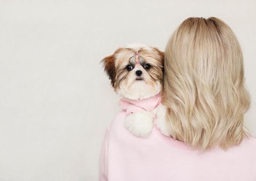 shih tzu puppy sitting on the blonde's shoulder, pink clothes