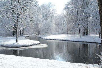 Foto op Canvas Donkergrijs beautiful winter landscape with snowy trees in a park by a winding Isar river in Munich