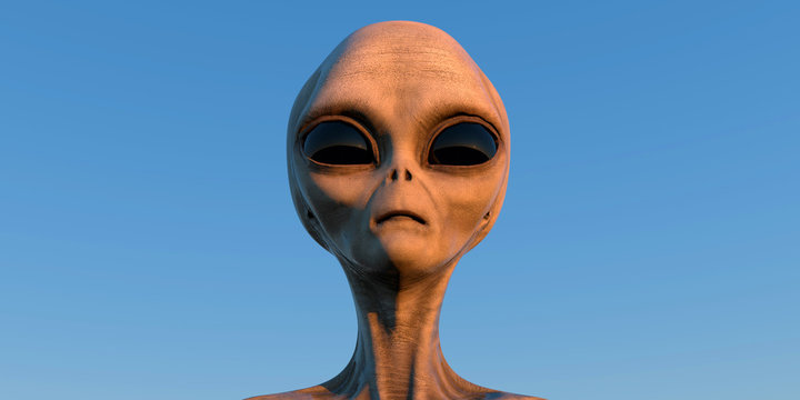 Grey Alien extremely detailed and realistic high resolution 3d illustration of an extraterrestrial being