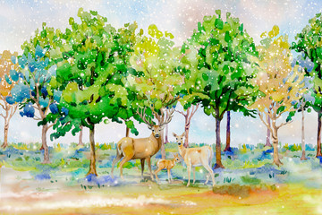 Watercolor landscape of animal, deer family in forest.