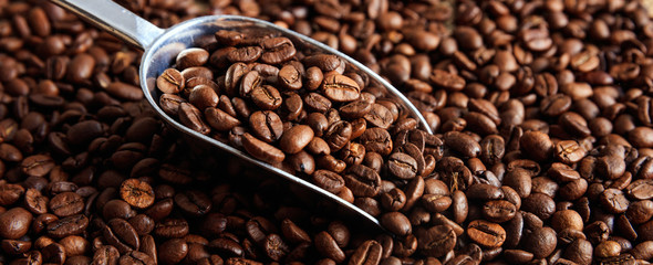 Coffee beans roasting full background, banner