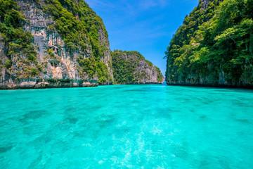 Photo sur Aluminium Vert corail krabi thailand