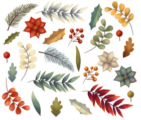 Christmas winter set of elements with flowers, leaves,  branch, berries, poinsettia. Hand drawn illustration.