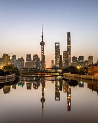 Garden Poster Shanghai shanghai skyline