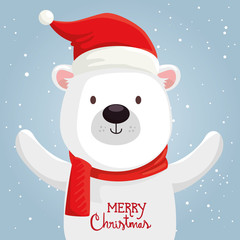 merry christmas cute bear character vector illustration design