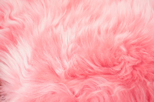 Close up pink fur texture for background