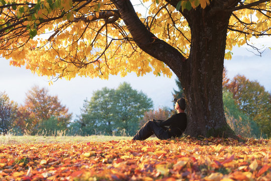 Man sitting under majestic orange cherry tree at autumn park at sunset. Dramatic colorful fall scene. Landscape photography