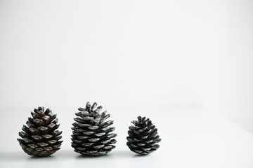 Pine cone on isolated white background. For new year, thanksgiving holiday and Autumn theme.