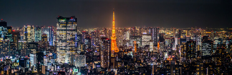 Deurstickers Diepbruine Night view of TOKYO JAPAN