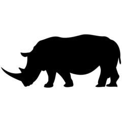 Schattenbild von einem Nashorn, isoliert freigestellt vor weißem Hintergrund