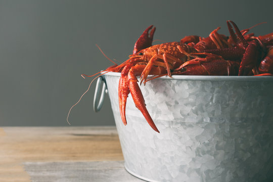 Crawfish boil in a steel bucket against a gray background with copy space.