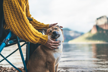tourist friend girl together tender dog closed eyes on background mountain, female hands hugging puppy pet on lake shore nature trip, friendship love concept Fotomurales