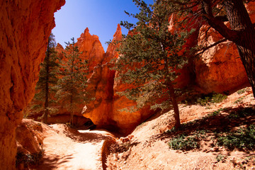 Fond de hotte en verre imprimé Rouge mauve Beeindruckende Landschaft von Bryce Canyon im Oktober 2019