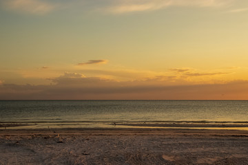 Sunset with distant cloudscape as sandpipers comb the beach